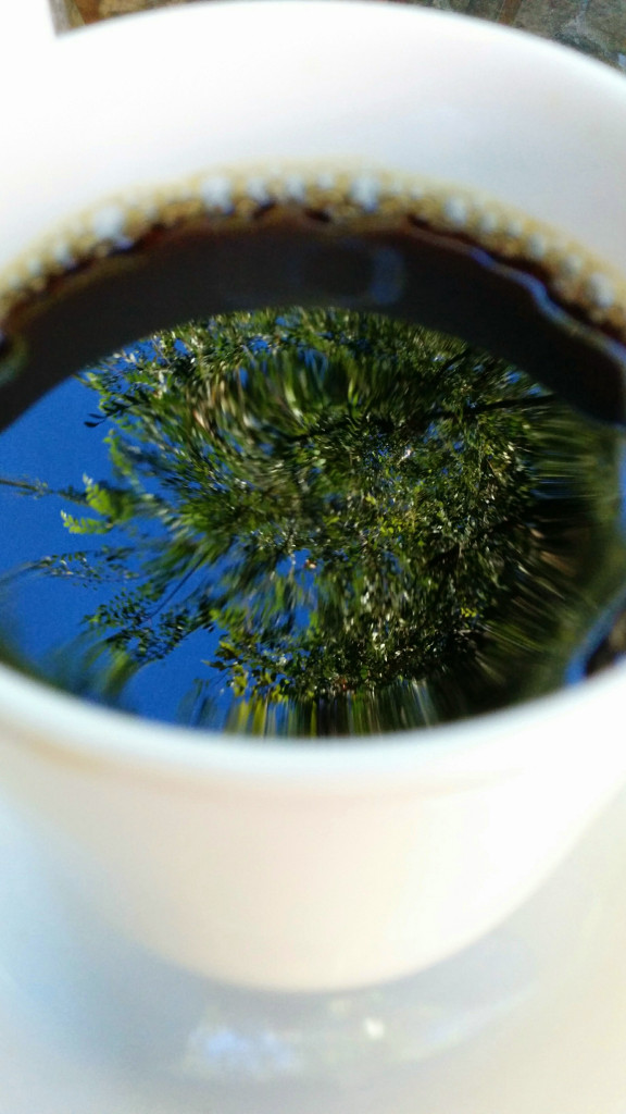 White porcelain cup of black coffee out of focus with in-focus reflection of blue sky and a tree overhead in the surface of the coffee.
